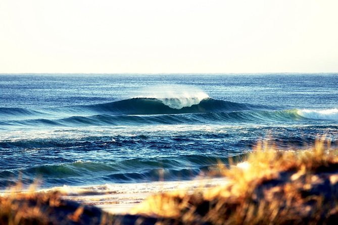 7-Day Byron Bay Evans Head and Moonee Beach Surf Safari from Brisbane Gold Coast or Byron Bay - Attractions Melbourne