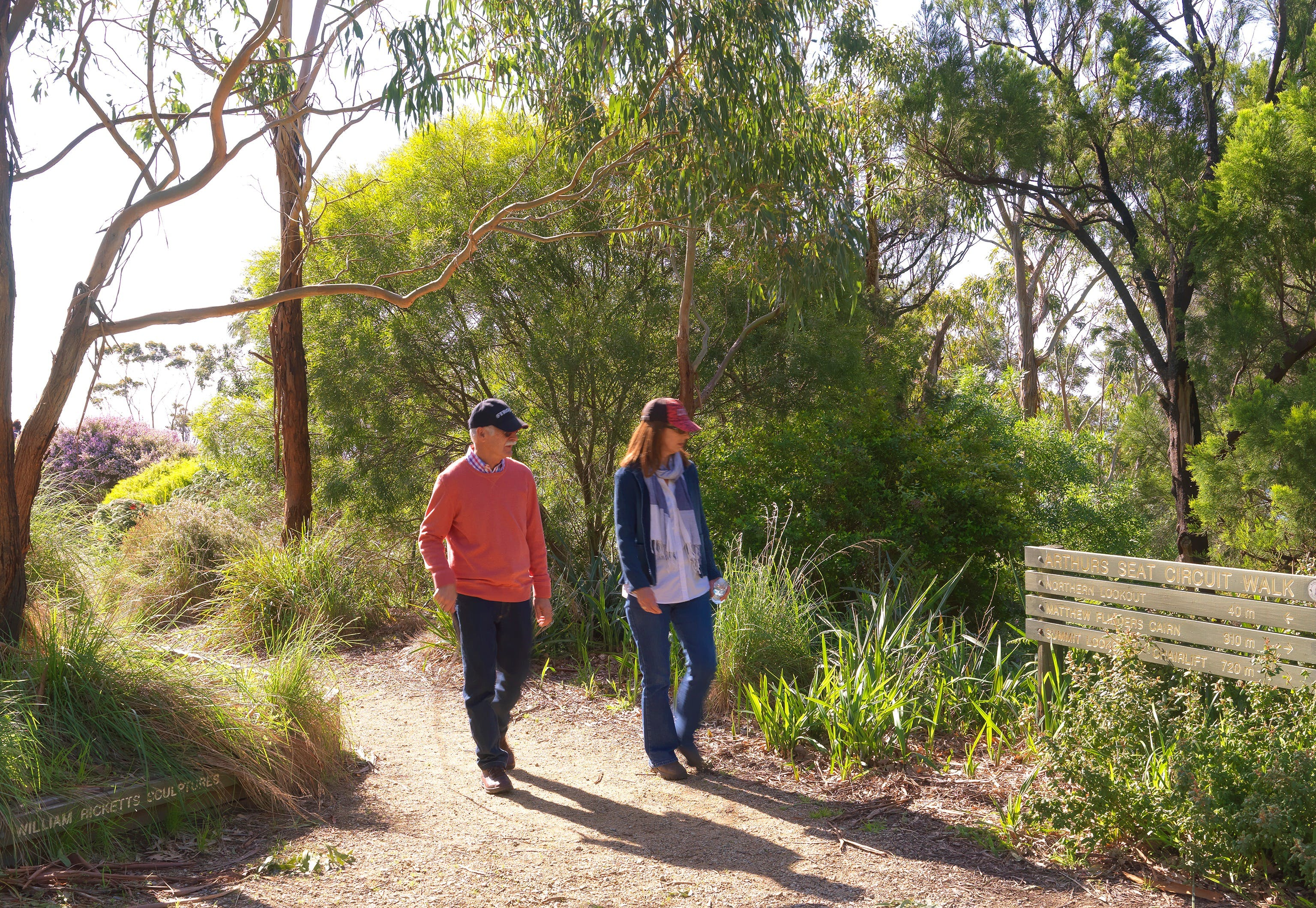 Arthurs Seat Circuit Walk - Attractions Melbourne