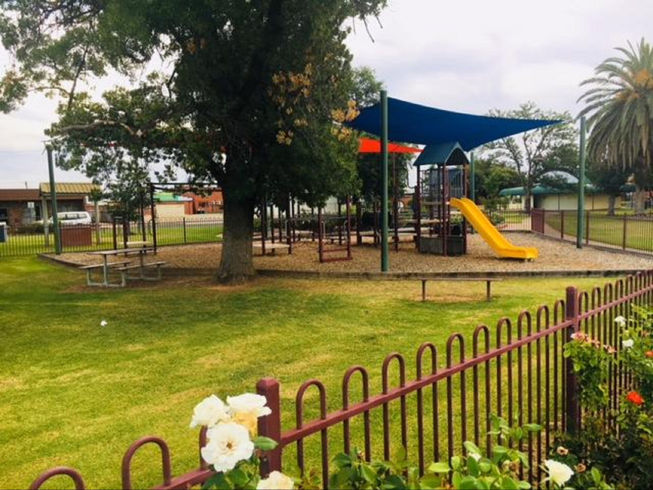 Cobram Mivo Park and Playground - Attractions Melbourne