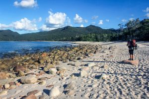 Hinchinbrook Island - Attractions Melbourne