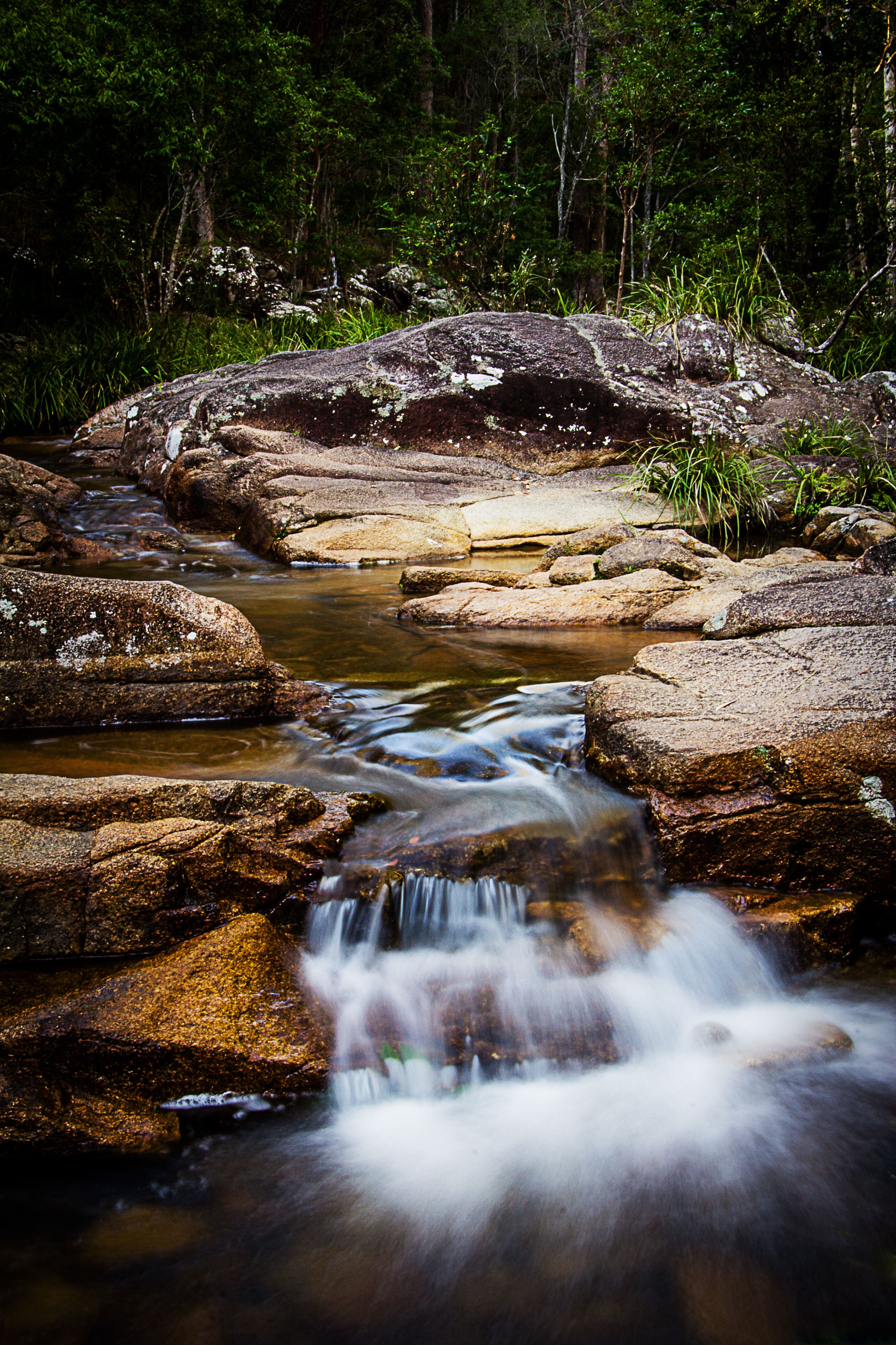 Mothar Mountain Rockpools - Attractions Melbourne