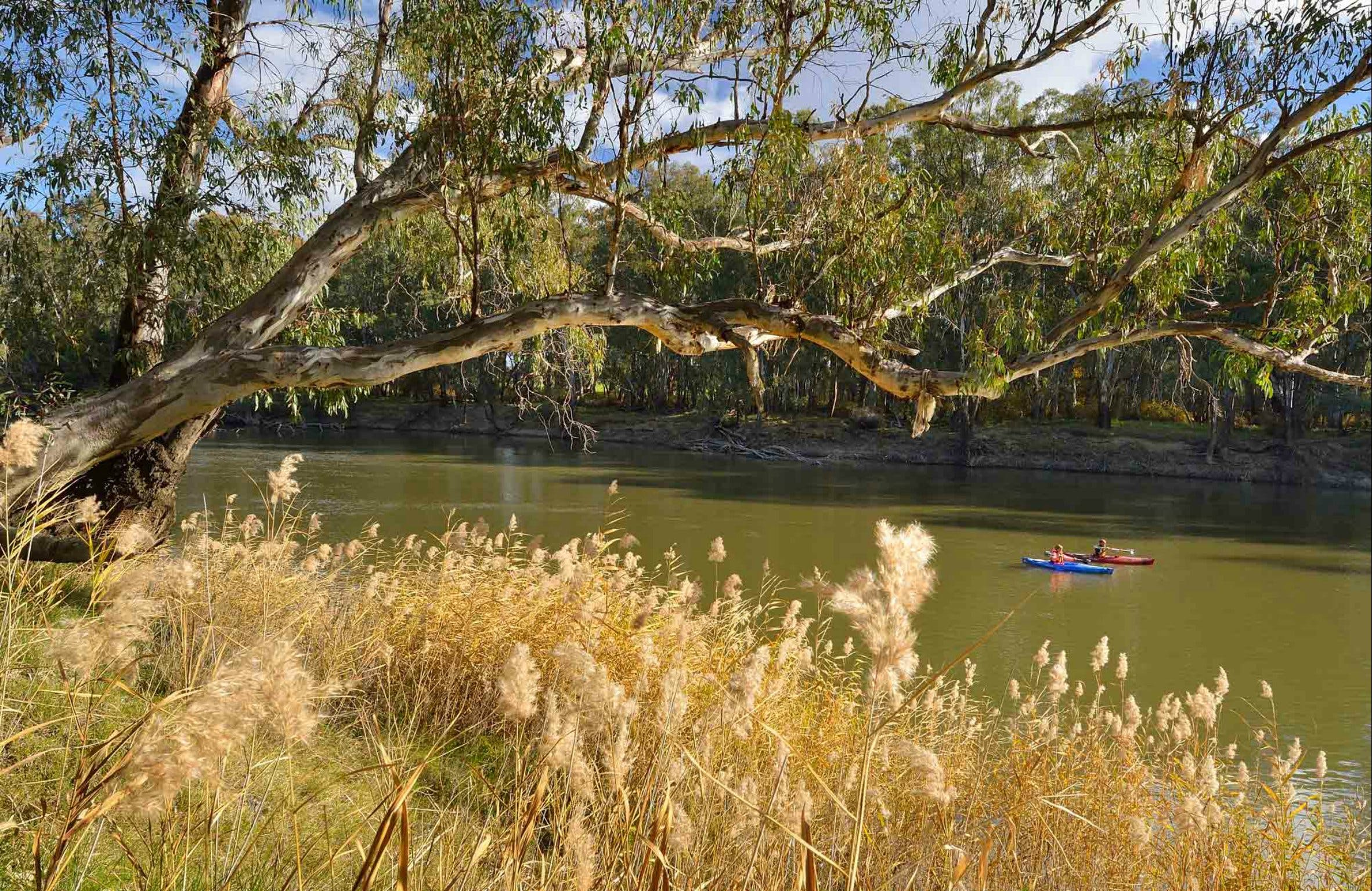 Murrumbidgee Valley National Park - Attractions Melbourne