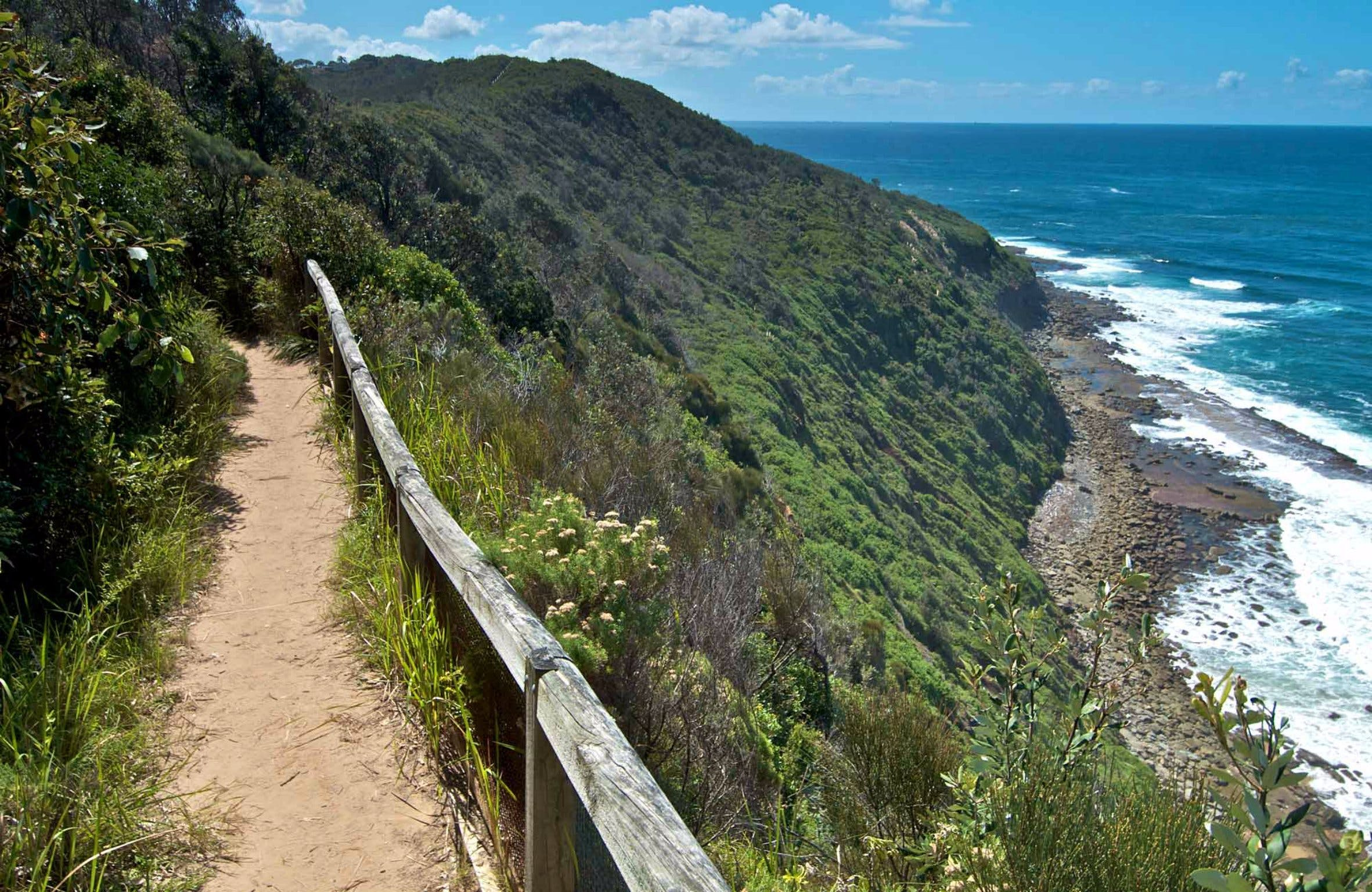 The Coast Walking Track - Attractions Melbourne
