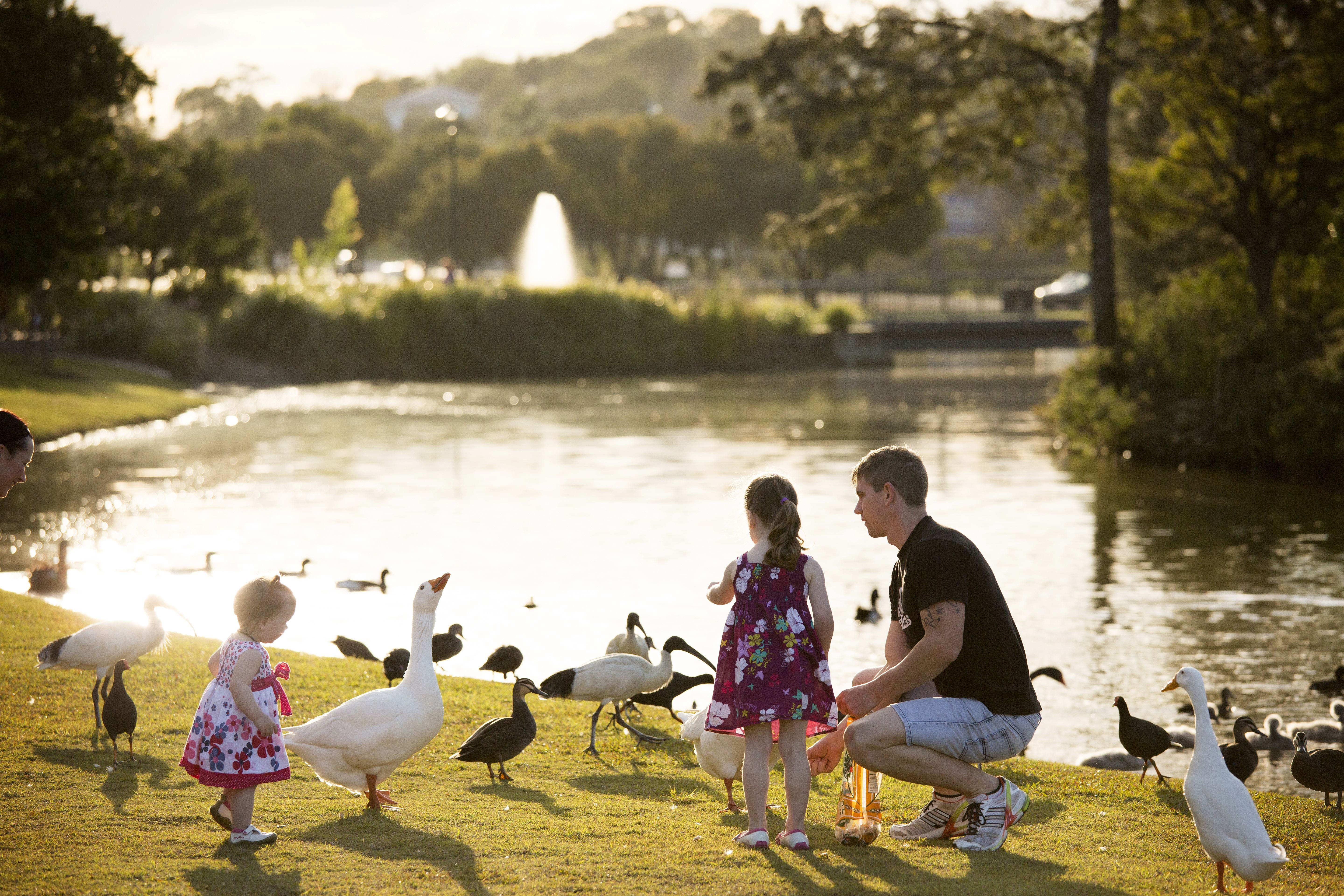 Lake Alford Recreational Park - Attractions Melbourne