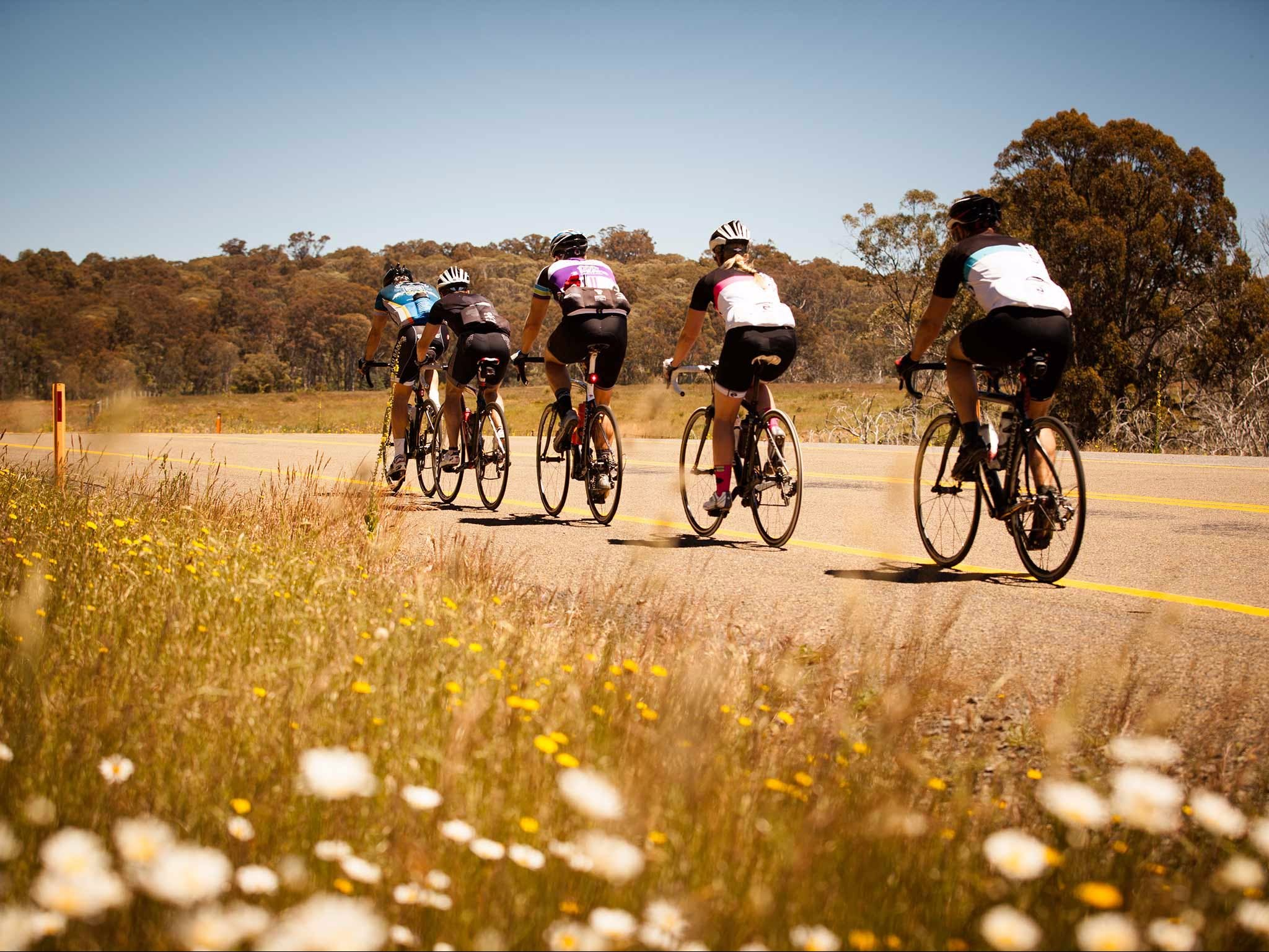 7 Peaks Ride - Dinner Plain - Attractions Melbourne