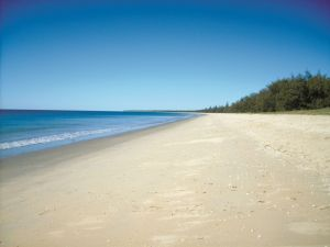Coral Coast Pathways Woodgate Beach Section - Attractions Melbourne