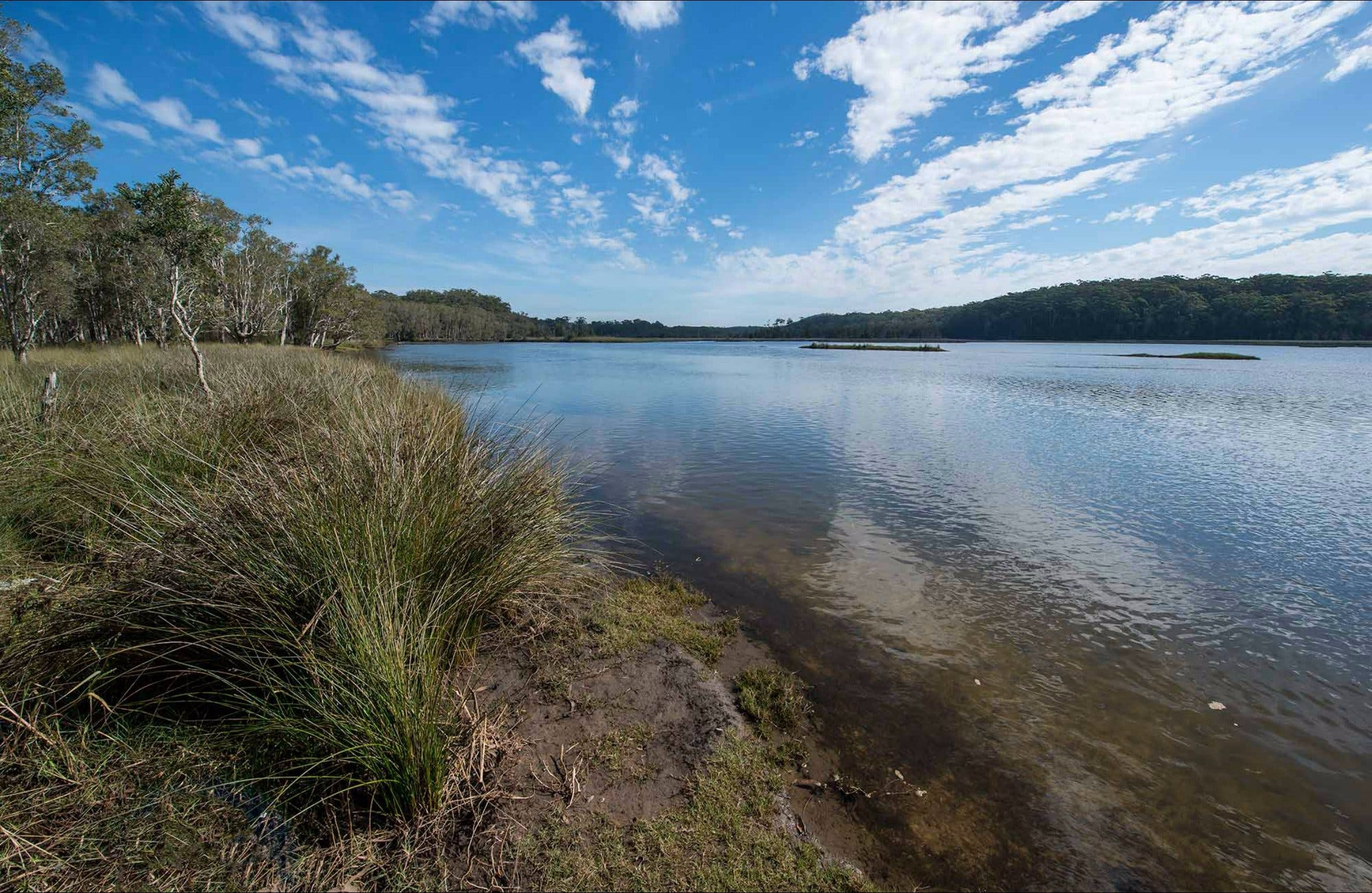 Lake Innes Nature Reserve - Attractions Melbourne
