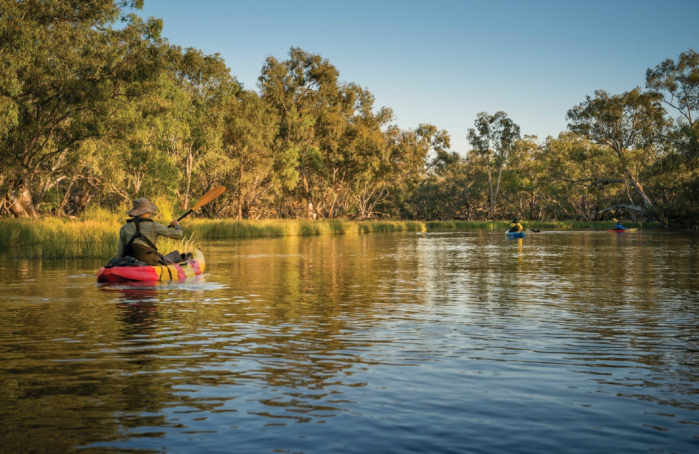 Macquarie Marshes Nature Reserve - Attractions Melbourne