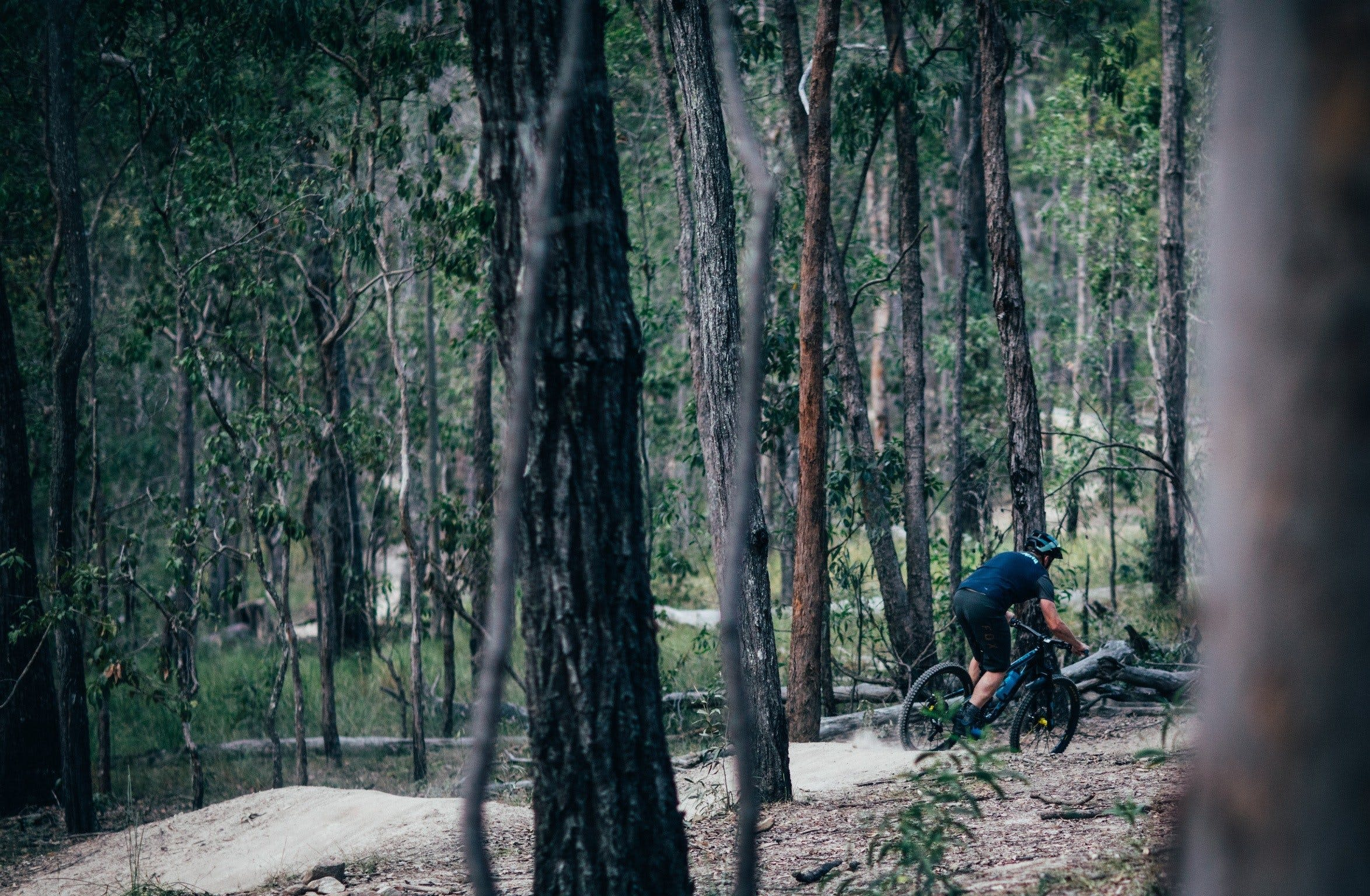 Old Tambo Downhill Mountain Bike Track - Attractions Melbourne