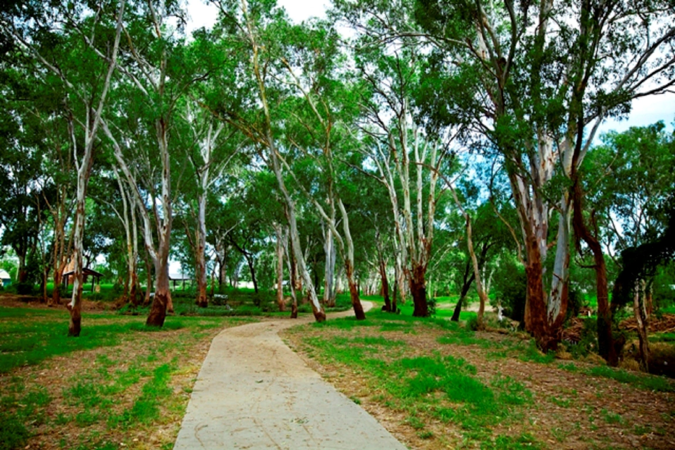Adungadoo Pathway - Attractions Melbourne