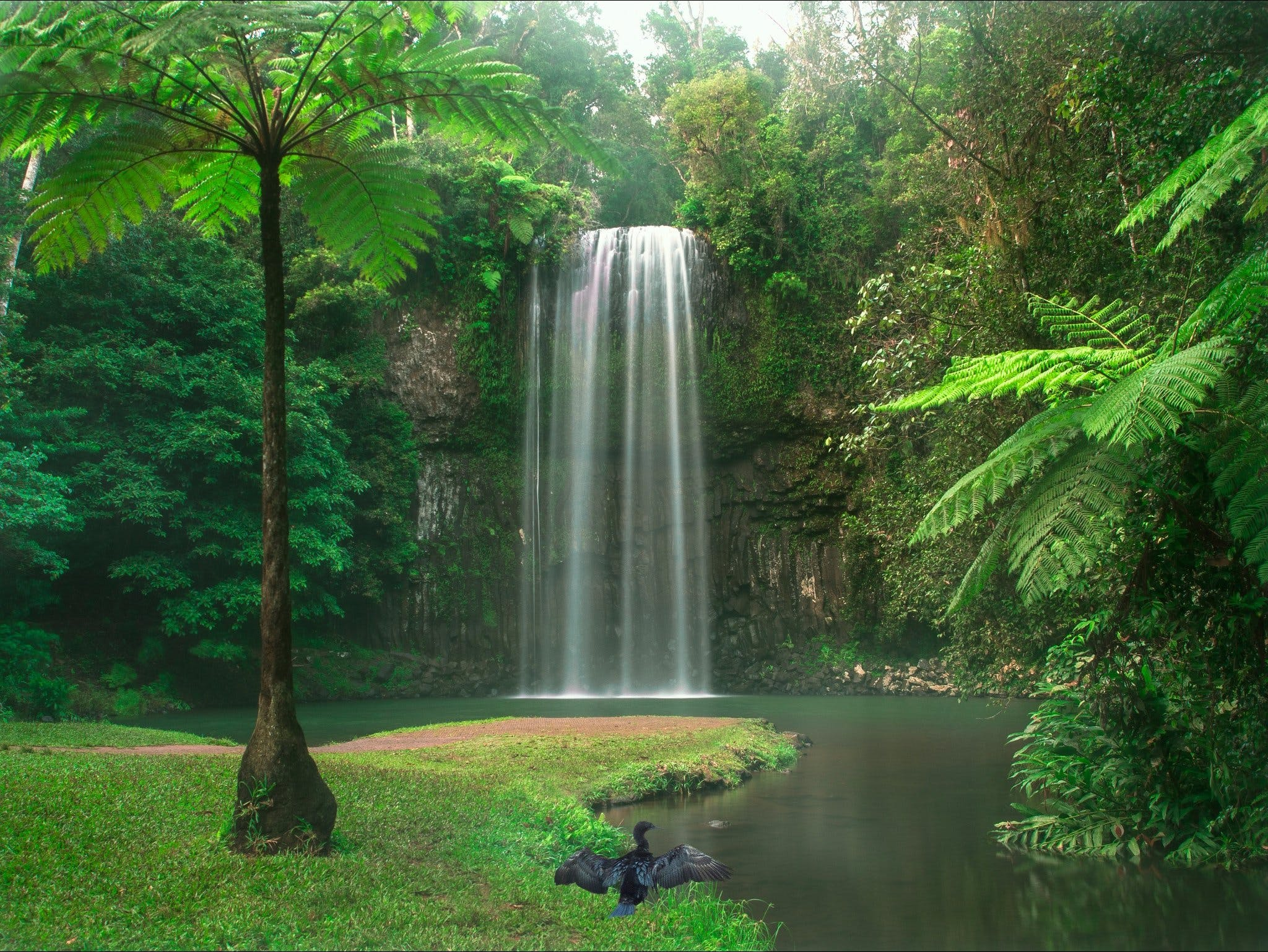 Atherton Tablelands - Attractions Melbourne