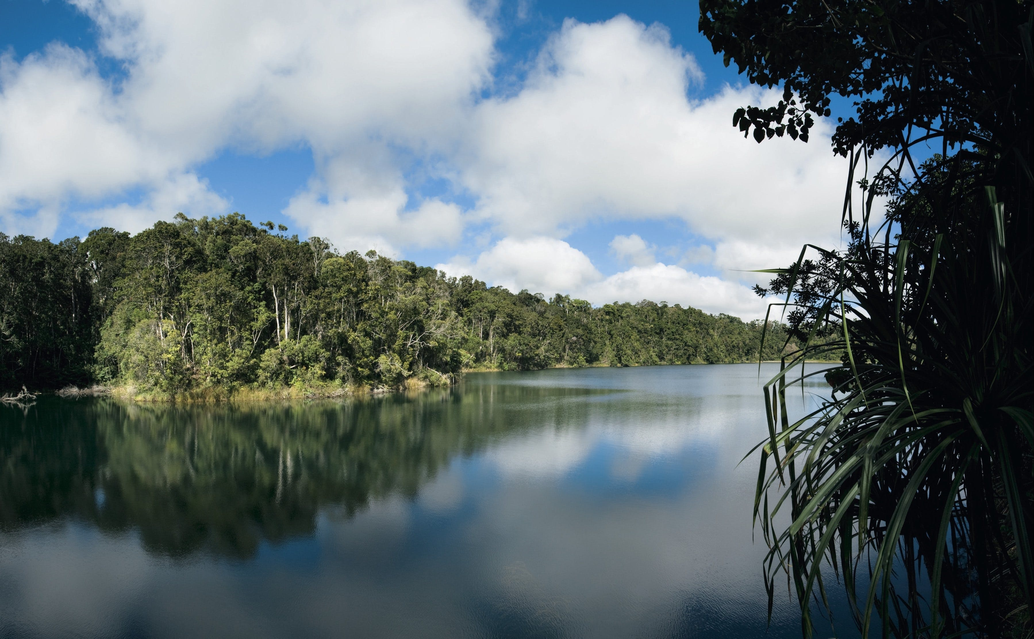 Lake Eacham Crater Lakes National Park - Attractions Melbourne