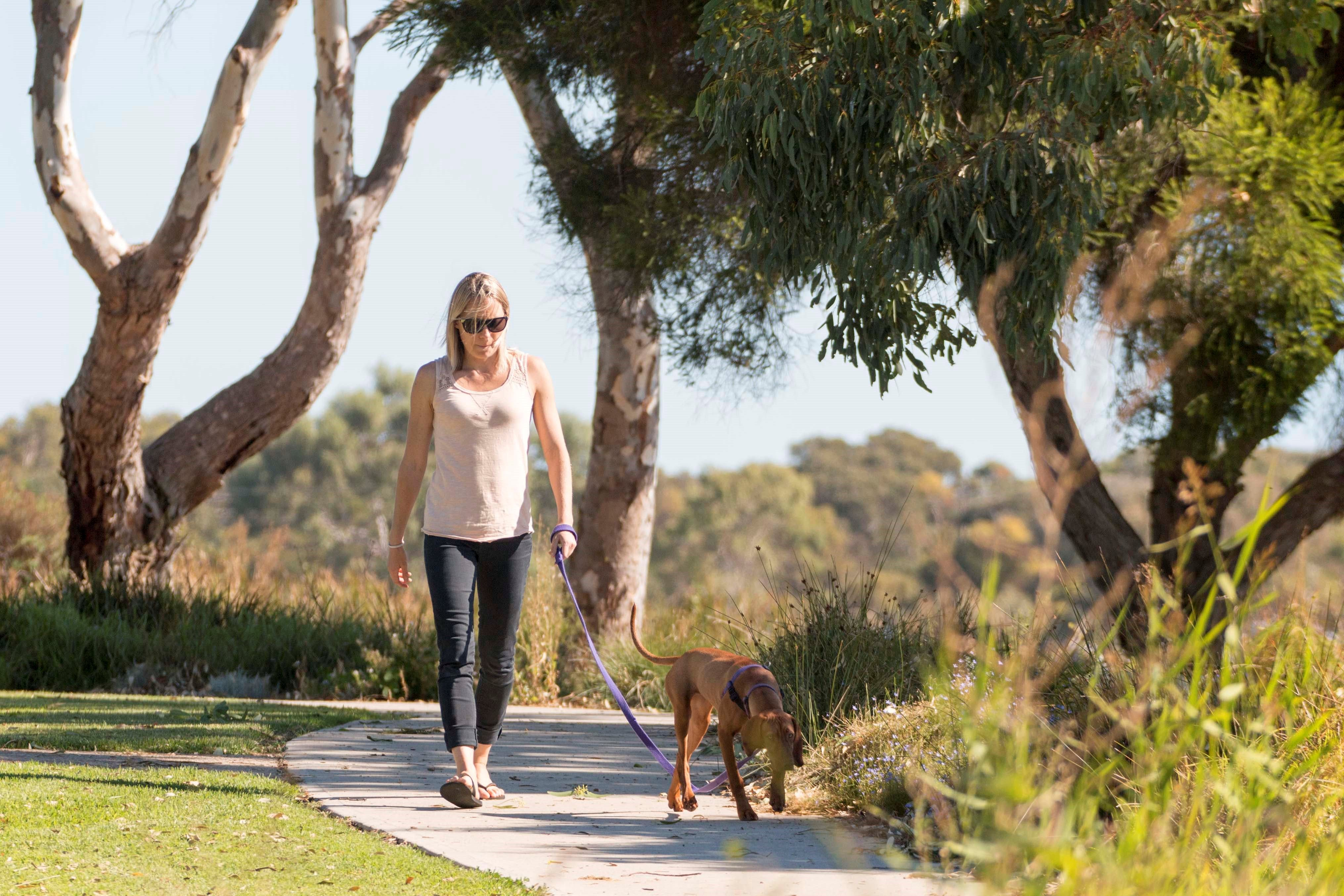 Meningie Walking and Cycling Trails - Attractions Melbourne