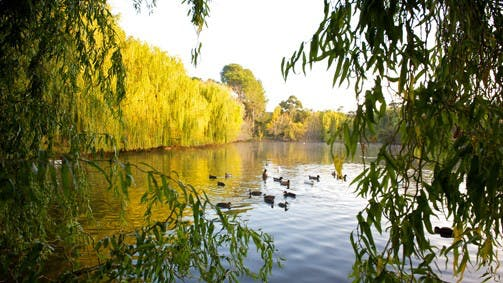 Sunbury - Attractions Melbourne