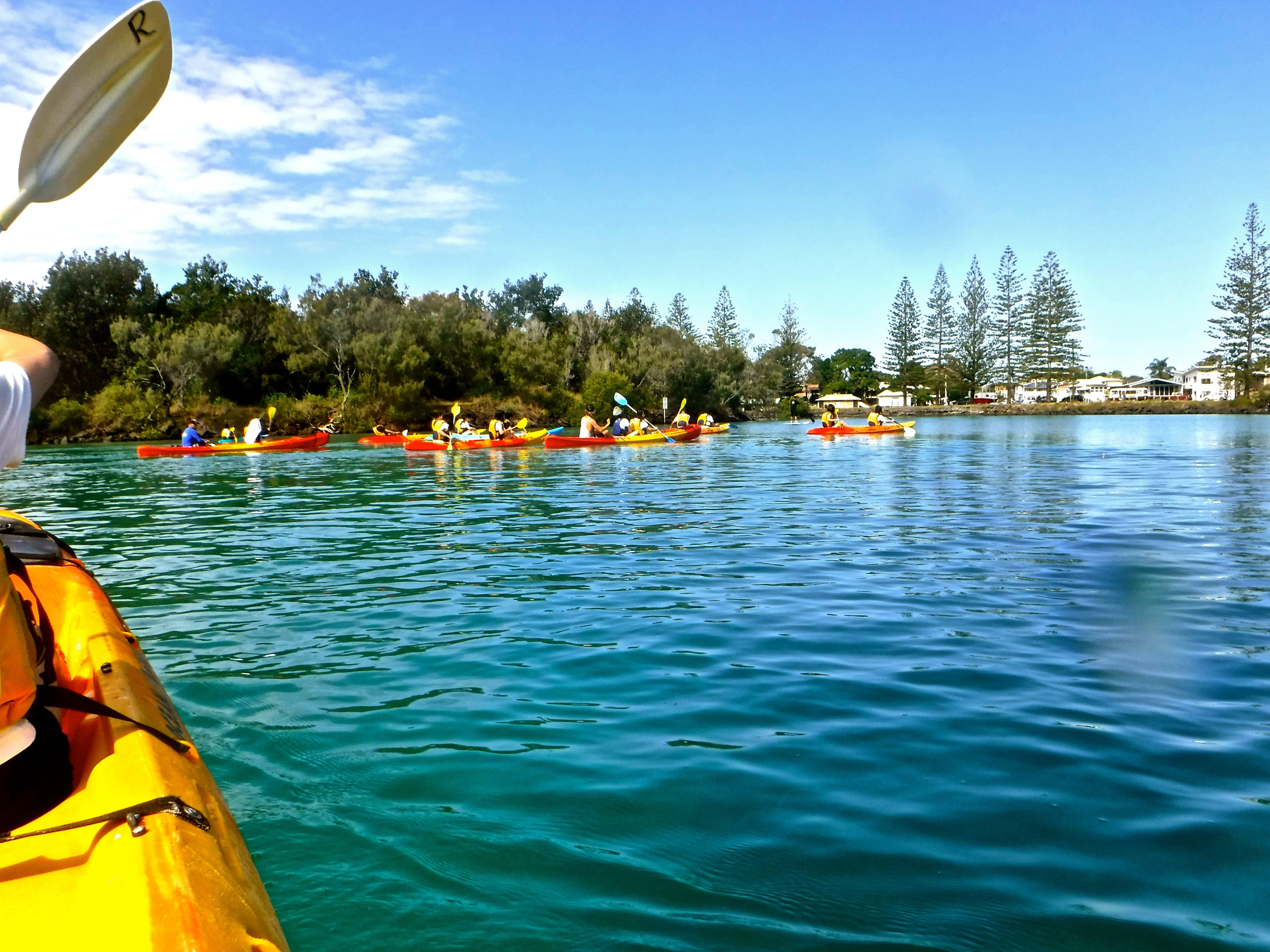 Byron Bay River Nature Kayak Tour - Attractions Melbourne