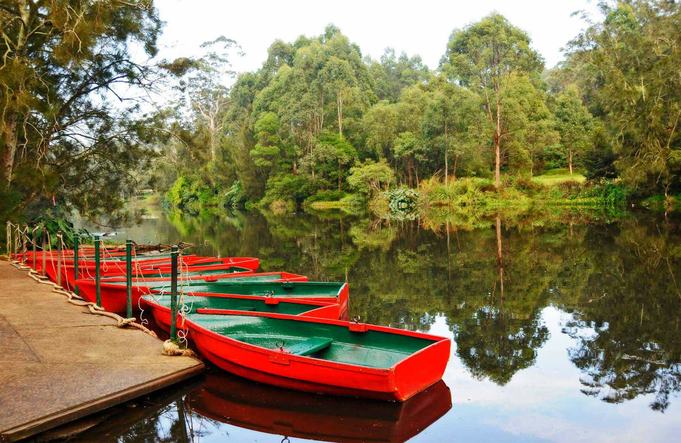 Lane Cove National Park - Attractions Melbourne