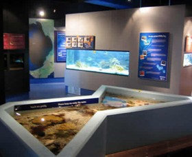 Marine and Freshwater Discovery Centre - Attractions Melbourne