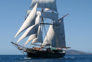 Australian Tallship Cruises - Attractions Melbourne