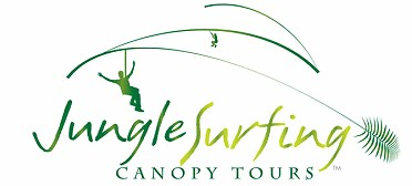 Jungle Surfing Canopy Tours and Jungle Adventures Nightwalks - Attractions Melbourne